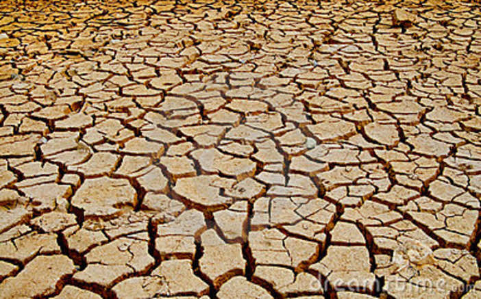 Act Now for Sustainable World – Stop Soil Erosion